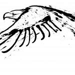The Center For Birds of Prey