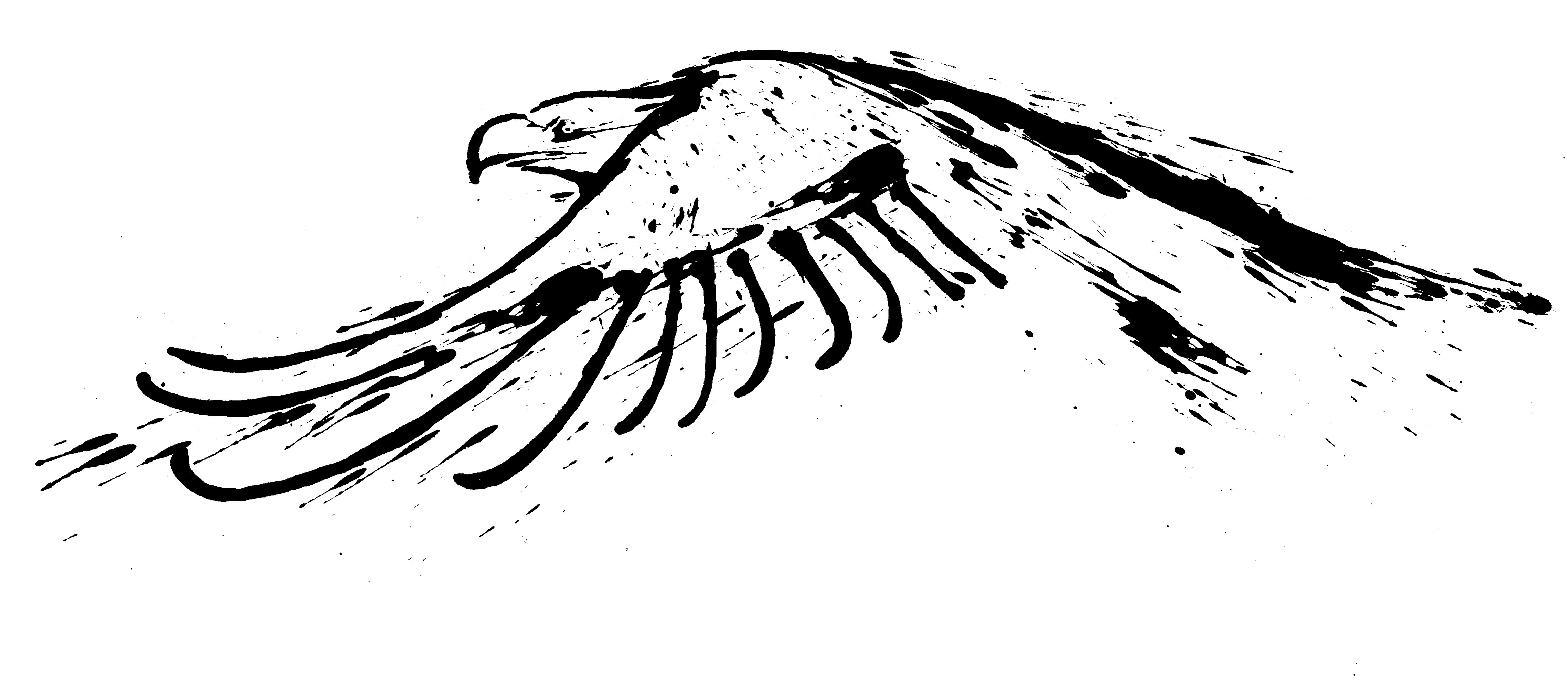 the center for birds of prey gil shuler graphic design